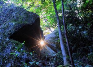 光の体験ツアー